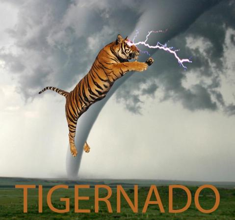 Tigernado in Oklahoma May 6, 2015