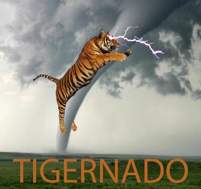 Tigernado in Oklahoma May 6, 2015