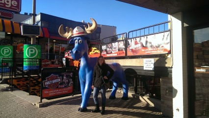 Blue moose in Niagara Falls