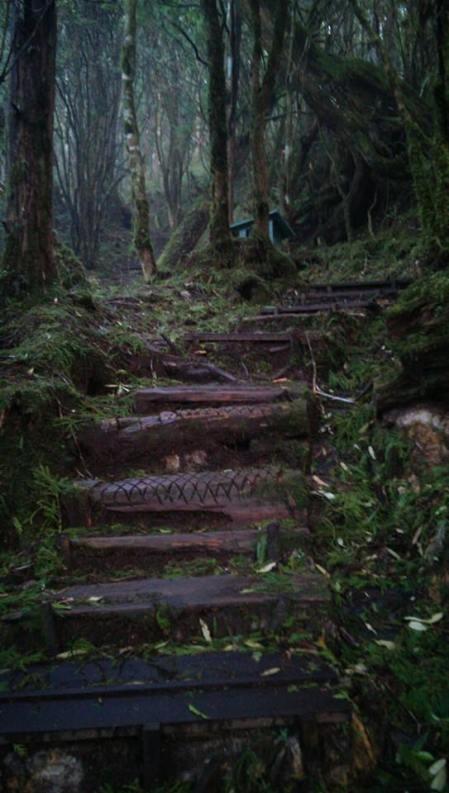 Walking Trail in Taiwan