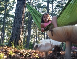 In a hammock at Petit Jean State Park