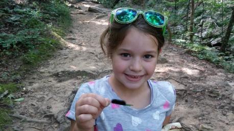 Found a caterpillar on Cedar Falls Trail
