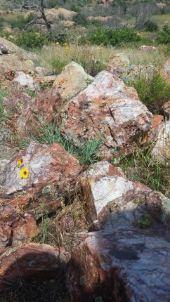 Wichita Mountains Quartz Rocks