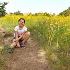 Wichita Mountains Spring Wildflowers