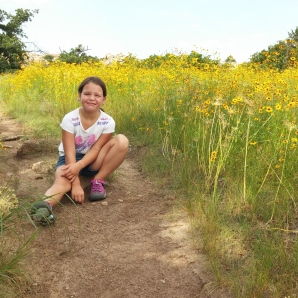 Wichita Mountains Spring Wildflowers