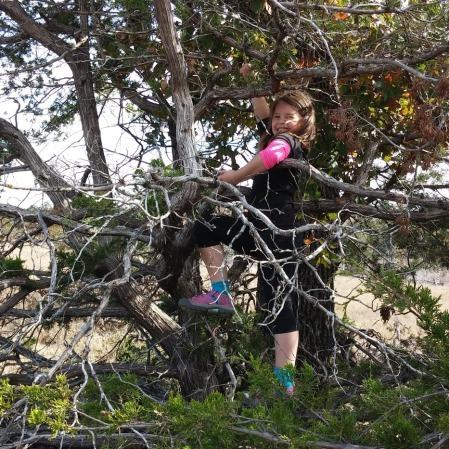 Climbing a tree in Wichita Mountains