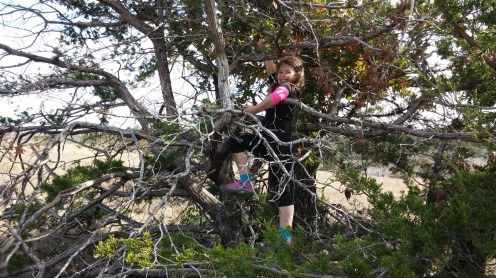 Climbing a tree in Wichita Mountains