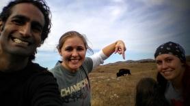 Bison in Wichita Mountains Oklahoma