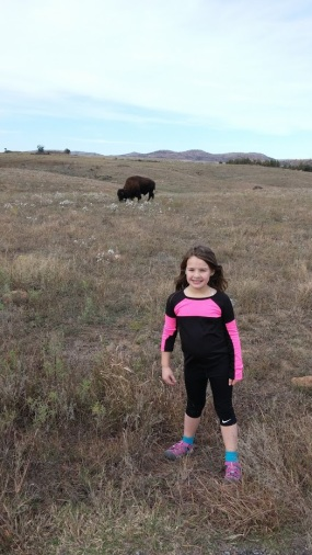 Wichita Mountains Bison