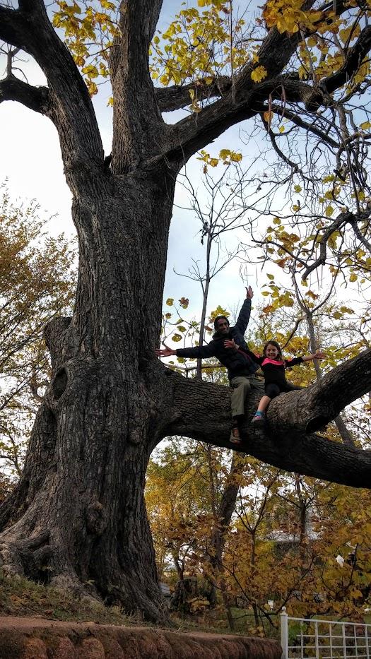 Climbing in Medicine Park