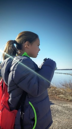 Watching for bald eagles in Norman, OK