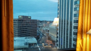 View from my Marriott Hotel room