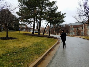 Walking up the road to WUSTL